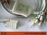 Contec einteiliges 10-Lead EKG Kabel