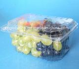 коробка пластичный упаковывать плодоовощ пластичного любимчика коробки салата Punnets 1000g устранимая