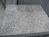 La piel de tigre blanco de la pared de mosaico granito granito fachada