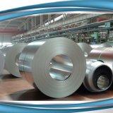 Europäisches des Standard-En10212 elektrolytisches zinnfreies Hauptstahlblech Zinnblech-des Ring-ETP/TFS