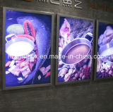 CE. Caixa de iluminação com luz de fundo retroiluminada RoHS Slim com moldura de alumínio