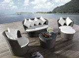 Design populares mobiliário moderno mobiliário Sofa Hotel Garden Sofá-Cama (YT459)