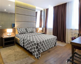 Amazonas-heißes verkaufenhotel Qualtiy das 4 Stück-Bett-Blätter stellte ein