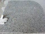 G603 de Tegels van de Steen van het Graniet voor Muur, het Vloeren