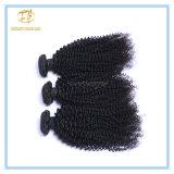 Hochwertige natürliche Farben-peruanisches verworrenes lockiges Jungfrau-Haar mit vollem Häutchen Wfpkc-001