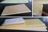Interior及びExterior Useのための反紫外線WPC Wall Panel