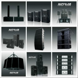 10 Zoll-kompakte Zeile Reihen-PROaudio (intelligentes 10)