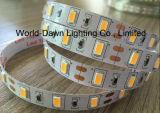 세륨 EMC LVD RoHS 보장 2 년, LED SMD 5730/5630 높은 루멘 지구 빛