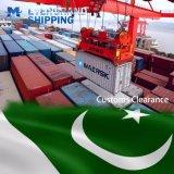 Betrouwbare Oceaan & Overzees die van China aan Pakistan/Karachi/Qasim/Gwadar verschepen