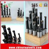 steel의 탄화물에 의하여 기울는 무료한 바 또는 무료한 공구