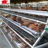 De Fabriek van China levert een Type Gegalvaniseerde Kooi van de Vogel van de Laag van het Gevogelte van de Kip