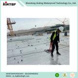 Membrana autoadesiva del bitume per il trattamento delle acque della costruzione