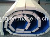 Taekwondo Wrestlingmat Flexi rouleau/MAT/rouler hors des nattes, Style Dollamur Grappling mat