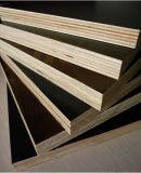 Schwarzes Film-Gesichts-Furnierholz für Buliding Material