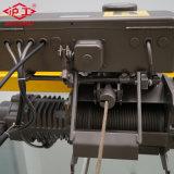 Precio eléctrico de la grúa del alzamiento de cuerda de alambre de 10 toneladas