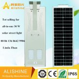 Solar-LED-Beleuchtung-Fabrik, die mit hohe Leistungsfähigkeits-Sonnenkollektor von Solar-LED-Straßenlaterneverkauft