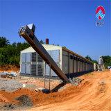 Structure métallique de force pour la ferme avicole