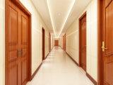 Matériaux décoratifs WPC revêtement solide porte d'entrée
