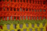 女性のためのアクリルのしまのあるハンドメイドのかぎ針編みのコート
