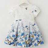Цветастое платье способа младенца в сбывании Hote