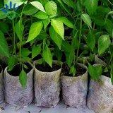 プランター成長する袋のための生物分解性の非編まれたプラント袋
