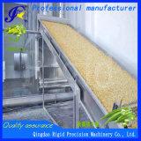 Grande Okra que desidrata a máquina de processamento vegetal desidratada secador