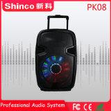 Shinco 최고 판매 대중적인 Bluetooth Karaoke Muitimedia 오디오 스피커 8 인치