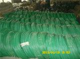 Collegare rivestito del PVC di qualità superiore con il prezzo più basso
