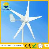 12V 24V 300W horizontaler Wind-Generator