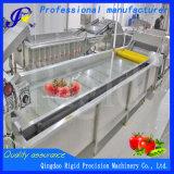El equipo de alimentos de la burbuja limpiador vegetal Lavadora
