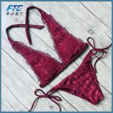 Newest Sport Bikinis Set Swimsuit Swimwear Beachwear Brazilian Bikini
