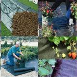 Pp. gesponnene Geotextile/PP Bodendeckel-/Weed-Matten-/Weed-Sperre/Gartenweed-Steuergewebe mit Qualität