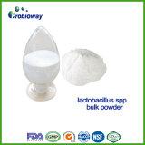 Kundenspezifisches Probiotics mit Protein-Puder-diätetischen Ergänzungs-Bestandteilen