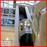 Hochgeschwindigkeitshöhenruder-volles Glas-besichtigendes panoramisches Höhenruder