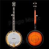5 de Banjo van koorden van de Fabriek van de Banjo van de Muziek Pango (pbj-900)