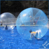 [تبو] و [بفك] مادّيّة قابل للنفخ ماء كرة مع [س] شهادة لأنّ عمليّة بيع
