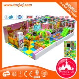 De kinderen spelen Speelplaats van de Gymnastiek van de Wildernis van het Park van de Spelen van het Centrum de Binnen
