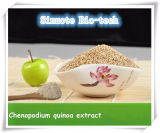 Extracto de semente de quinoa natural pura de Sinuote Supply