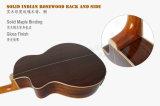 Ранг Китая Aiersi высокая полностью твердая акустическая гитара Taylor (SG102SE)