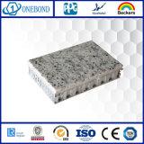 Losa compuesta de la piedra del panel trasero del panal