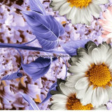 солнцецвет Pigment&Disperse захода солнца 100%Polyester напечатал ткань для комплекта постельных принадлежностей