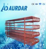 Chambre froide pour l'industrie de la viande et de la volaille Stockage à froid avec promotion chaude, équipement de réfrigérateur