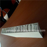 20mm paneles gruesos de aluminio de nido de abeja para Ascensor Decoración