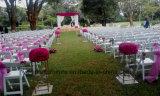 De witte Vouwbare Stoelen van de Gladiator voor Huwelijk (yc-p50-01)