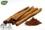Extrato de casca de canela natural 10%~30% polifenóis; 10%, 20% Flavonas