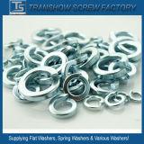 SUS304 / A2 de la rondelle ressort en acier inoxydable
