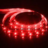 Streifen-Lampe der grünen Farben-SMD 3528 60LEDs/M LED