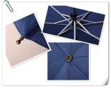 フリンジの自動入り口および最後の傘