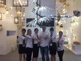 Heiß! Acryllampen-Farbton-weiße hängende Beleuchtung für Projekte