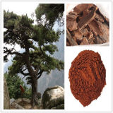 Het Uittreksel Proanthocyanidins van de Schors van de pijnboom voor Voedsel en Supplement